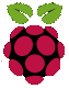 de:services:it_consulting:logo_raspberry-pi.png